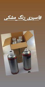 иранская компания по производству аэрозольных красок